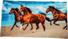 Osuška HKM koně velká