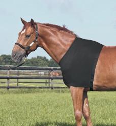 Vesta pro koně Busse