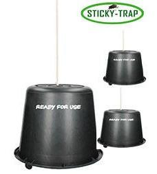 Sticky Trap Kyblík 3ks